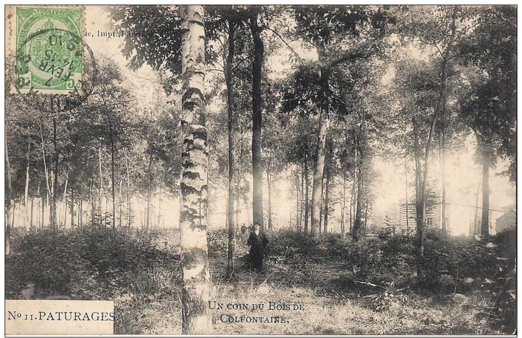 Bois de Colfontaine (4)