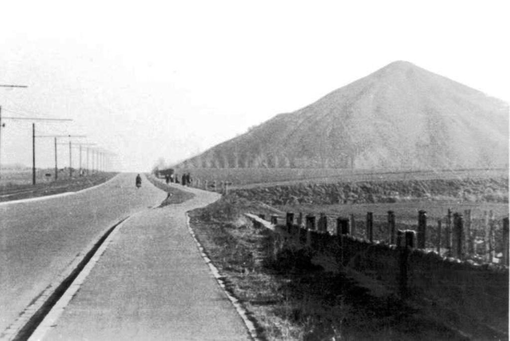 Avenue Biesman