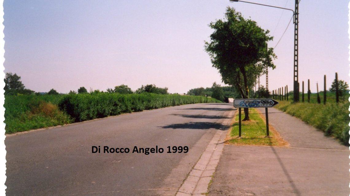 Avenue Biesman (6)